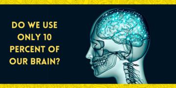 10% Brain Myth