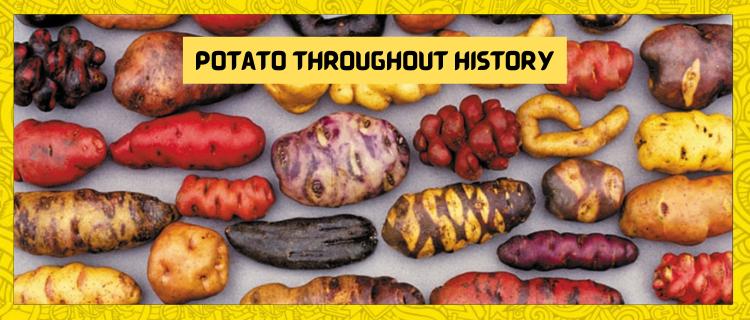 How Potato Shaped History?